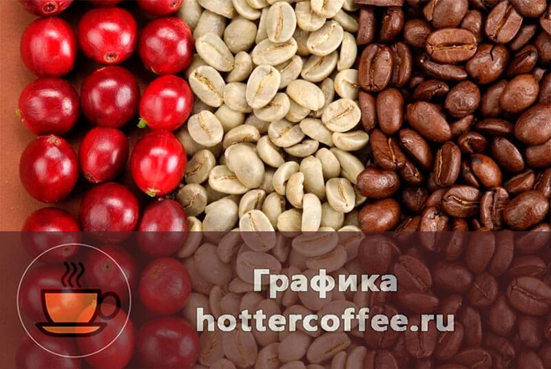 Кофейные ягоды, бобы и зерна Робусты
