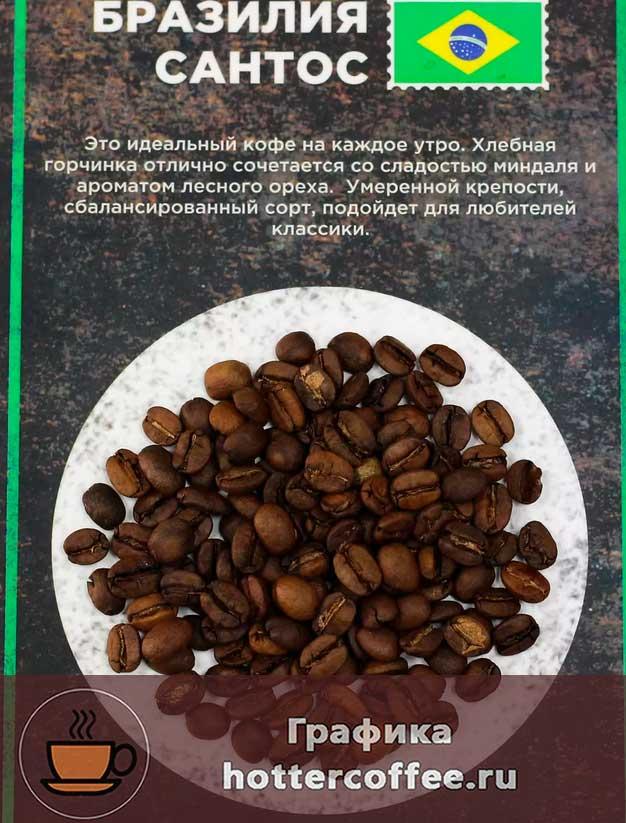 Сорт бразильский сантос