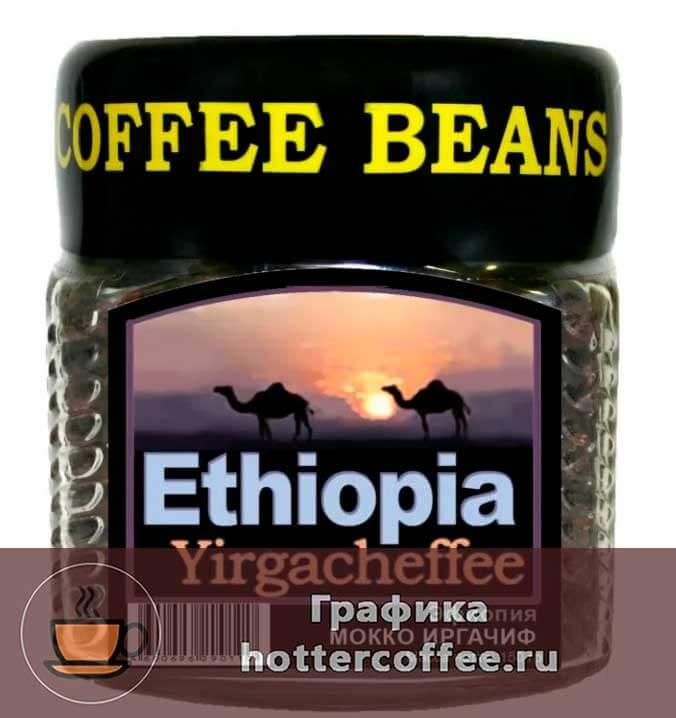 Сорт Эфиопия Иргачиф