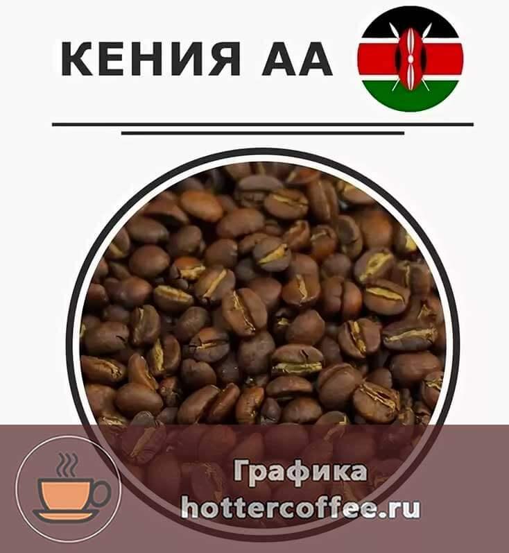 Лучшие сорта кенийского кофе