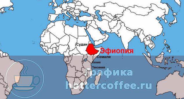 Эфиопия - родина аравийского кофейного дерева