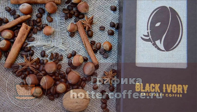 Самый дорогой сорт кофе - Black Ivory