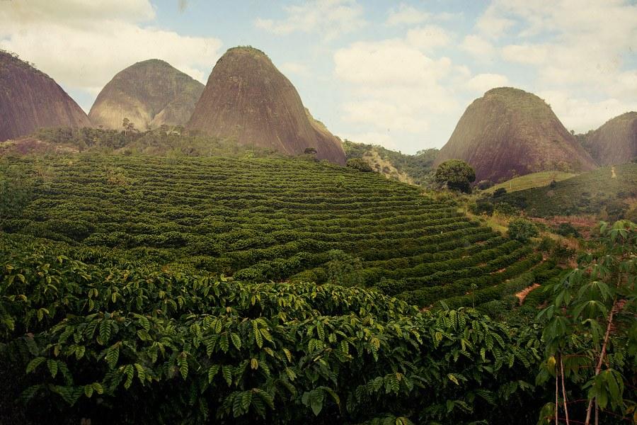 Лучший кофе по странам